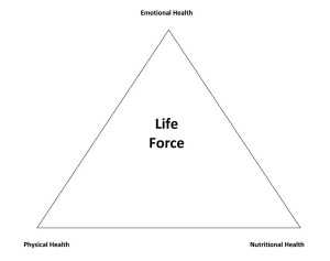 Life Force triangle